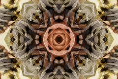 Kaleidoscope with beautiful ornamental of color Stock Image