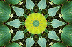 Kaleidoscope effect Royalty Free Stock Photography