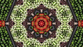 Kaleidoscope, grocery. Abstract kaleidoscope, loop able, full HD stock video footage