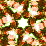 Kaleidoscope leaf. An abstract background with repeating elements royalty free stock photos