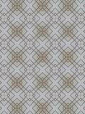 Kaleidoscope of the lines Stock Photography