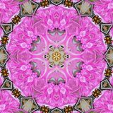 Kaleidoscope Mehndi style flower star with circles watercolor illustration pink floral fractal, tile effect. Kaleidoscope Mehndi style flower star with circles Stock Photography