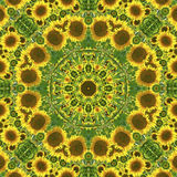 Kaleidoscope with natural motives of sunflowers. In Spain in summertime Stock Photo