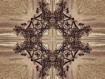 Kaleidoscope Natural Royalty Free Stock Photos