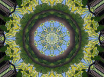 Kaleidoscope pattern of branches and sky Stock Photo