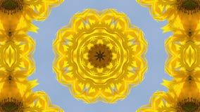 Kaleidoscope, Sunflower stock video