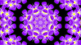 Kaleidoscope with violet flowers stock video