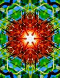 Hexagon Strange Dry Plants Kaleidoscope Design. This kaleidoscope was created by using an image of a dry flower vector illustration