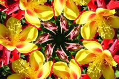 kaleidoscope (64) Royalty Free Stock Photo