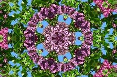 kaleidoscope (67) Stock Images