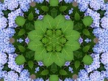 kaleidoscopefjäder Royaltyfria Bilder