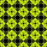 KaleidoscopePattern2 Fotografering för Bildbyråer