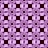 KaleidoscopePattern3 Royaltyfri Bild