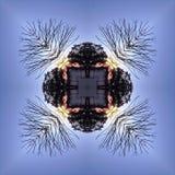 Kaleidoscopic силуэты дерева против неба захода солнца Стоковые Фото