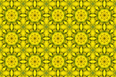 Kaleidoscopic floral pattern Stock Photos