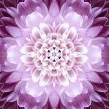 Ρόδινο ομόκεντρο κέντρο λουλουδιών. Kaleidoscopic σχέδιο Mandala Στοκ φωτογραφία με δικαίωμα ελεύθερης χρήσης