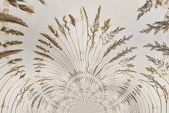 Kaleidoscopic Pattern of a Herbarium Royalty Free Stock Image