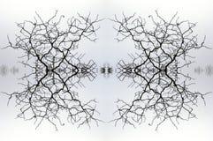 Kaleidoskop 2 Lizenzfreie Stockfotos