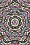 Kaleidoskop-Garten Stockfoto