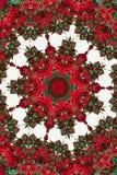 Kaleidoskop von roten Beeren Muster, Mandala Lizenzfreie Stockfotografie