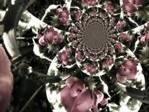 Kalejdoskop av rosor Arkivfoto