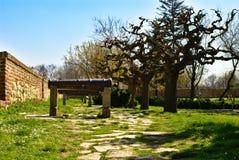 Kalemegdan, Belgrado met Japanse Bomen en Middeleeuwse Canons - de Dag van Sunny Winter ` s Stock Fotografie