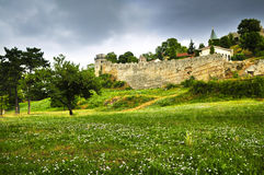 Kalemegdan fortress in Belgrade. With field of wildflowers Royalty Free Stock Image