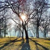 Kalemegdan Park view in the morning Belgrade Serbia Royalty Free Stock Photography