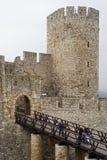 kalemegdan stefan för belgrade despot torn Royaltyfri Foto
