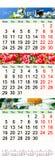Kalendarz dla Kwietnia May Czerwiec 2017 z naturalnymi obrazkami Zdjęcie Royalty Free