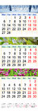 Kalendarz dla Luty Marzec i Kwietnia 2017 z obrazkami natura Zdjęcie Stock