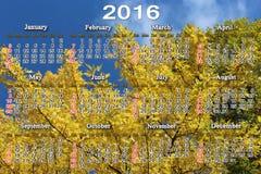 Kalendarz dla 2016 na żółtych liściach klonowych Fotografia Stock