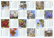 Kalendarz 2017 z natura wizerunkami: zawiera miesiące o dni i Obrazy Stock