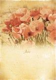 Kalendarzowy retro. Czerwiec. Rocznika lata krajobraz. Obraz Stock