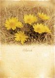 Kalendarzowy retro. Marzec. Rocznik wiosny krajobraz. Obrazy Royalty Free