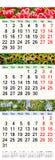 Kalender drie maanden van 2017 met beelden van aard Stock Afbeelding