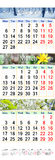 Kalender drie maanden van 2017 met beelden van aard Royalty-vrije Stock Afbeelding
