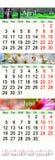 Kalender för April Juni 2017 med naturliga bilder Arkivfoton