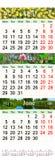 Kalender för April May och Juni 2017 med naturliga bilder Arkivfoton