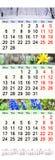 Kalender för den Februari mars och April 2017 med kulöra bilder av naturen Royaltyfri Bild
