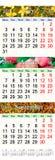 Kalender för Juli August September 2017 med kulöra bilder Arkivfoton