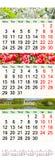 Kalender för Juli August September 2017 med tre färgade bilder Royaltyfri Bild