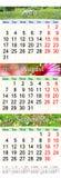 Kalender för Juli August September 2017 med tre färgade bilder Royaltyfri Foto