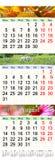 Kalender för Juni Juli och Augusti 2017 med kulöra bilder Arkivbild