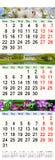 Kalender för Maj Juni Juli 2017 med bilder Royaltyfri Fotografi