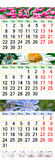 Kalender för Maj Juni Juli 2017 med bilder Arkivfoto