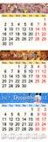 Kalender för Oktober November och December 2017 med kulöra bilder Arkivfoto