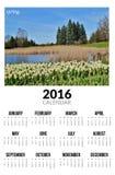 Kalender för 2016 skyen för showen för växter för rörelse för den förfallna för fältet för blueoklarhetsdagen ligganden för fokus Arkivfoton