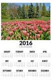 Kalender für 2016 Ist ein grünes Feld voll der Weizenanlagen Stockbilder