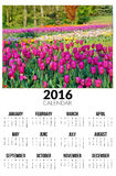 Kalender für 2016 Ist ein grünes Feld voll der Weizenanlagen Lizenzfreie Stockbilder
